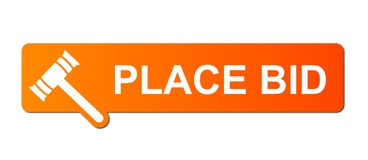 place-bid-orange-13905759